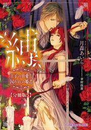 縛 王子の狂愛、囚われの姫君【分冊版5】【イラスト入り】