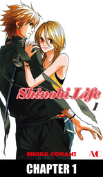Shinobi Life, Chapter Collections