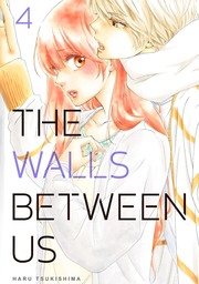 The Walls Between Us 4