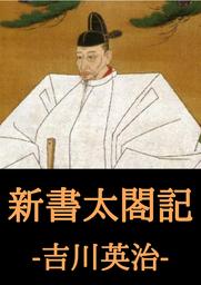 新書太閤記