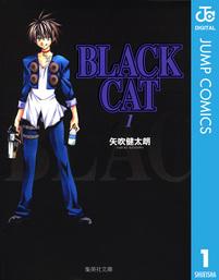 【20%OFF】BLACK CAT【全12巻セット】